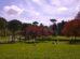 Ville e parchi a Roma dove passeggiare